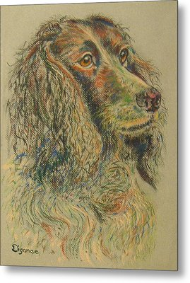 Straight From The Field - Spaniel Portrait Metal Print