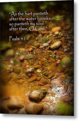 Stream Bed Psalm 42 Metal Print by Cindy Wright