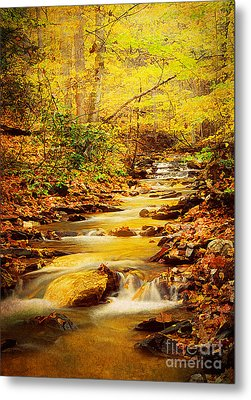 Streams Of Gold Metal Print by Darren Fisher
