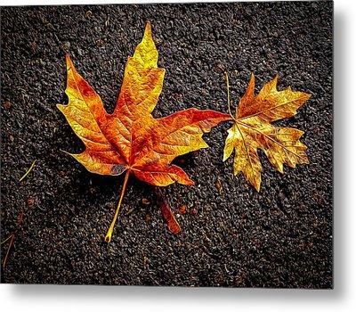 Street Leaf Metal Print by Ken Stanback
