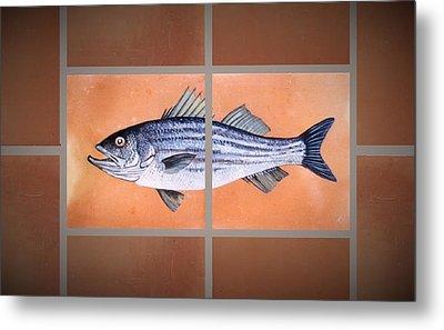Striped Bass Metal Print by Andrew Drozdowicz