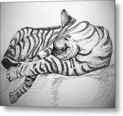 Metal Print featuring the drawing Stripes by Mary Schiros