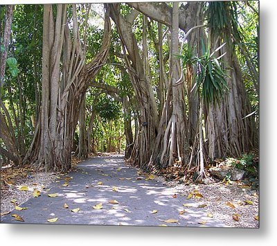 Stroll With Me Metal Print by Sheila Silverstein