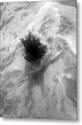 Metal Print featuring the photograph Stump In The Surf by Elizabeth  Doran