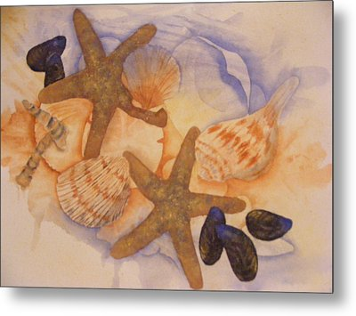 Sue's Seashells Metal Print