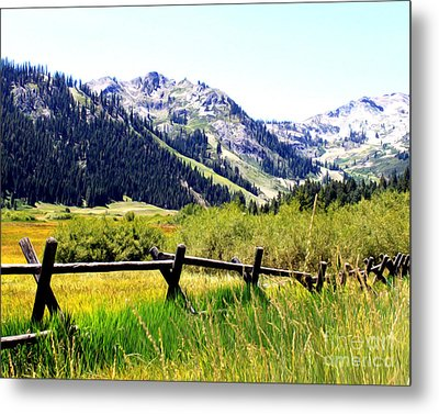 Metal Print featuring the photograph Summer At Squaw Valley by Anne Raczkowski