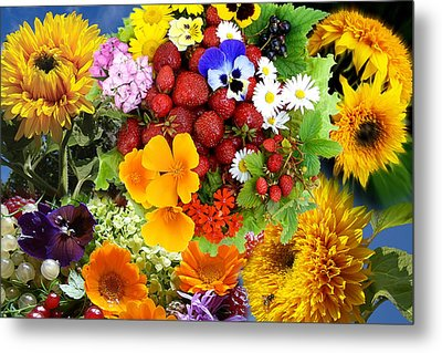 Metal Print featuring the photograph Summer Collage - Imagination by Aleksandr Volkov