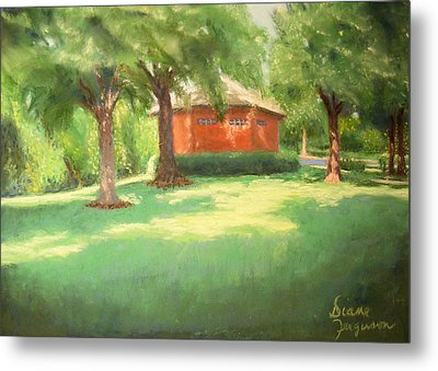 Summer Day Metal Print by Diane Ferguson