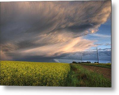 Summer Evening Storm Blowing Over Ripe Metal Print by Dan Jurak