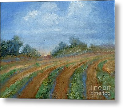 Metal Print featuring the painting Summer Fields by Sally Simon