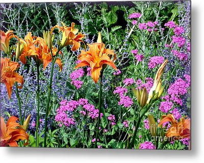 Metal Print featuring the photograph Summer Garden by Tanya  Searcy