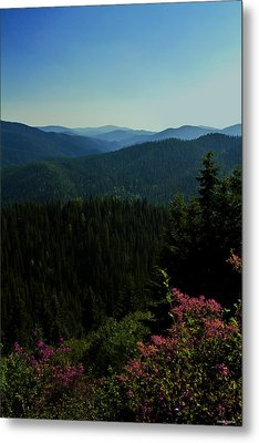 Summer In The Mountains Metal Print