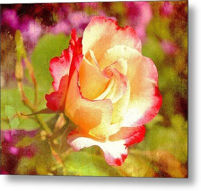 Summer Rose With Texture Metal Print by Cathie Tyler
