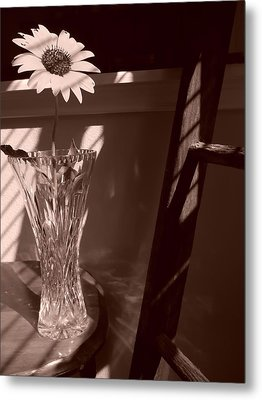 Metal Print featuring the photograph Sun In The Shadows by Lynnette Johns