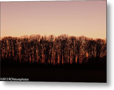 Metal Print featuring the photograph Sundown In Silhouette by Rachel Cohen