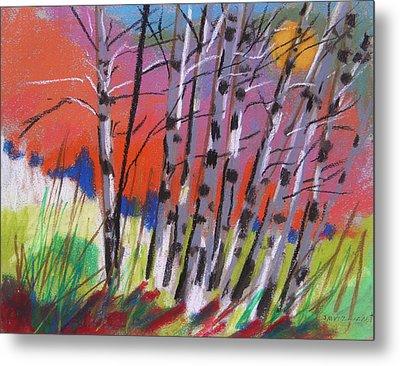 Sundown White Birches Metal Print by John Williams