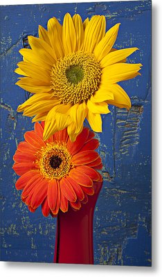 Sunflower And Mum Metal Print by Garry Gay