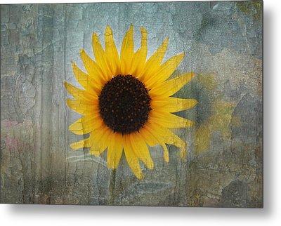 Sunflower Burst Metal Print by Lisa Moore