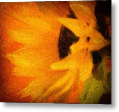 Metal Print featuring the photograph Sunflower by James Bethanis