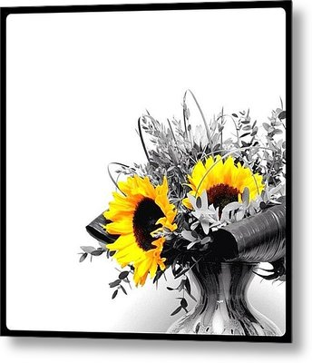 Sunflower Metal Print by Mark B