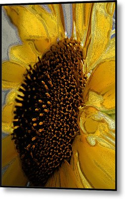 Metal Print featuring the photograph Sunflower Side by Lou Belcher