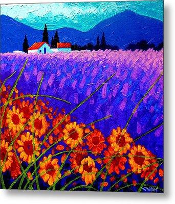 Sunflower Vista Metal Print by John  Nolan
