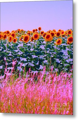 Metal Print featuring the photograph Sunflowers by Ann Johndro-Collins