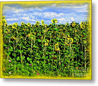 Sunflowers In France Metal Print by Joan  Minchak