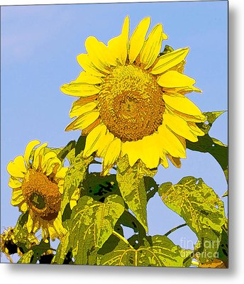 Sunflowers In Morning Metal Print by Artist and Photographer Laura Wrede