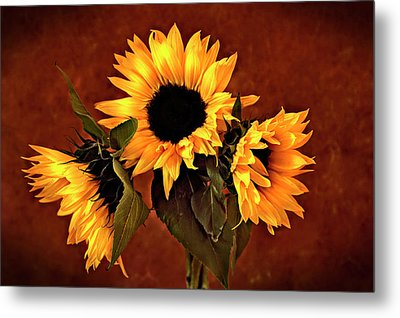 Metal Print featuring the photograph Sunflowers by James Bethanis