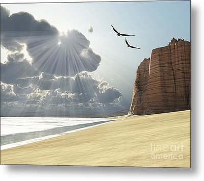 Sunlight Shines Down On Two Birds Metal Print