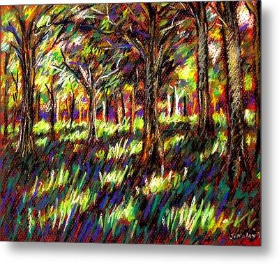 Sunlight Through The Trees Metal Print by John  Nolan