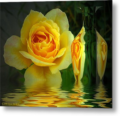 Sunny Delight And Vase 2 Metal Print by Joyce Dickens