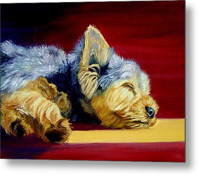 Sunny Patch Yorkshire Terrier Metal Print by Lyn Cook