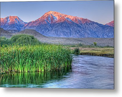 Sunrise Alpenglow On Mt Tom And Owen's River, California, Usa, October 2010 Metal Print by Bill Wight
