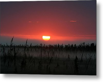 Sunrise At Kenai Peninsula Metal Print by Mary Gaines