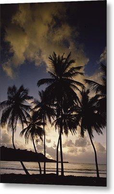 Sunrise At La Sagesse Bay Over Marquis Metal Print by Gerry Ellis