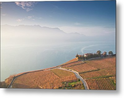 Sunrise At Lavaux Vineyard Terraces Metal Print by Harri's Photography