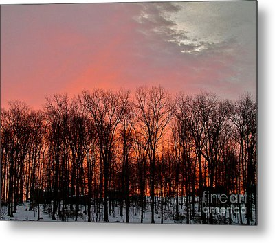 Metal Print featuring the photograph Sunrise Behind The Trees by Mark Dodd