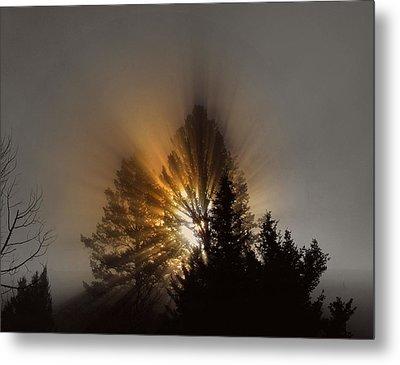 Metal Print featuring the photograph Sunrise by Irina Hays