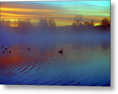 Sunrise On Duck Pond Metal Print by Laurie Prentice