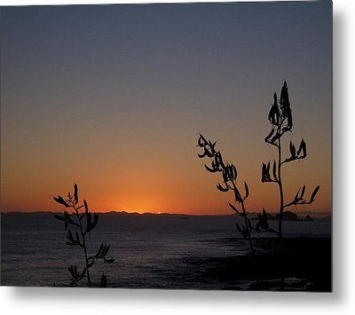 Metal Print featuring the photograph Sunrise On East Coast Of North Island 2 by Peter Mooyman