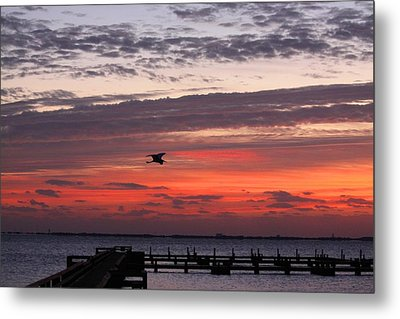 Sunrise On The Indian River Metal Print by Jeanne Andrews