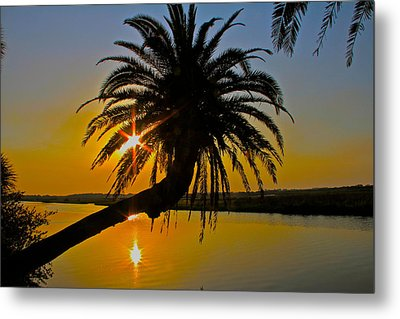 Metal Print featuring the photograph Sunrise On The Loop by Alice Gipson