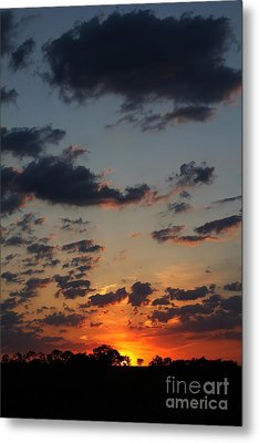 Metal Print featuring the photograph Sunrise Over Field by Everett Houser