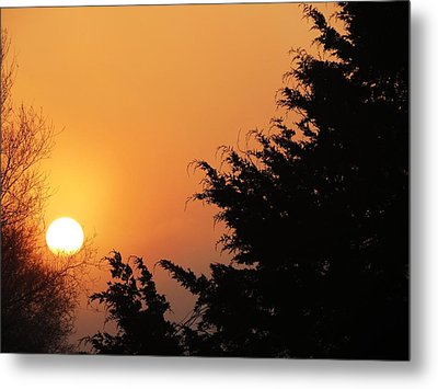 Sunrise Metal Print by Rebecca Overton