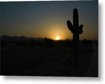 Metal Print featuring the photograph Sunrise Saguaro by Tom Singleton