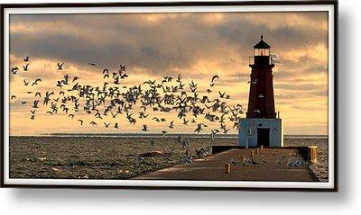 Sunrise Seagulls 219 Metal Print