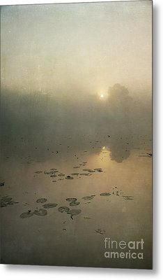 Sunrise Through Mist Metal Print by Paul Grand