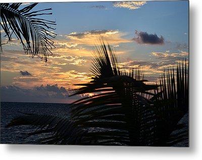 Sunrise Through Palms Metal Print by Ken  Collette